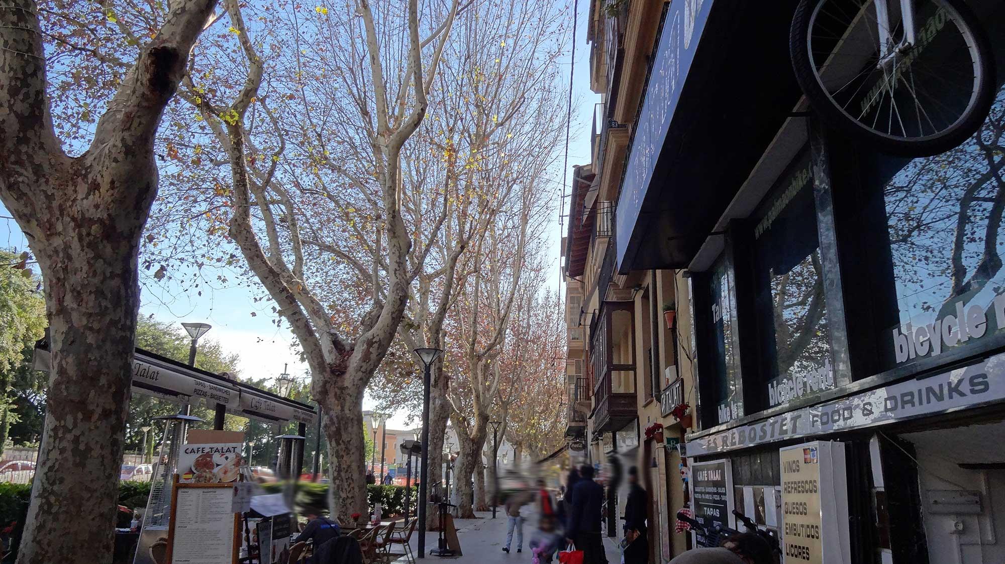 Pelas ruas de Palma de Mallorca