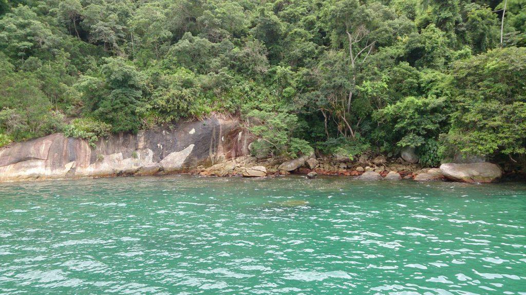 Ilha do Algodão - Praias de Paraty