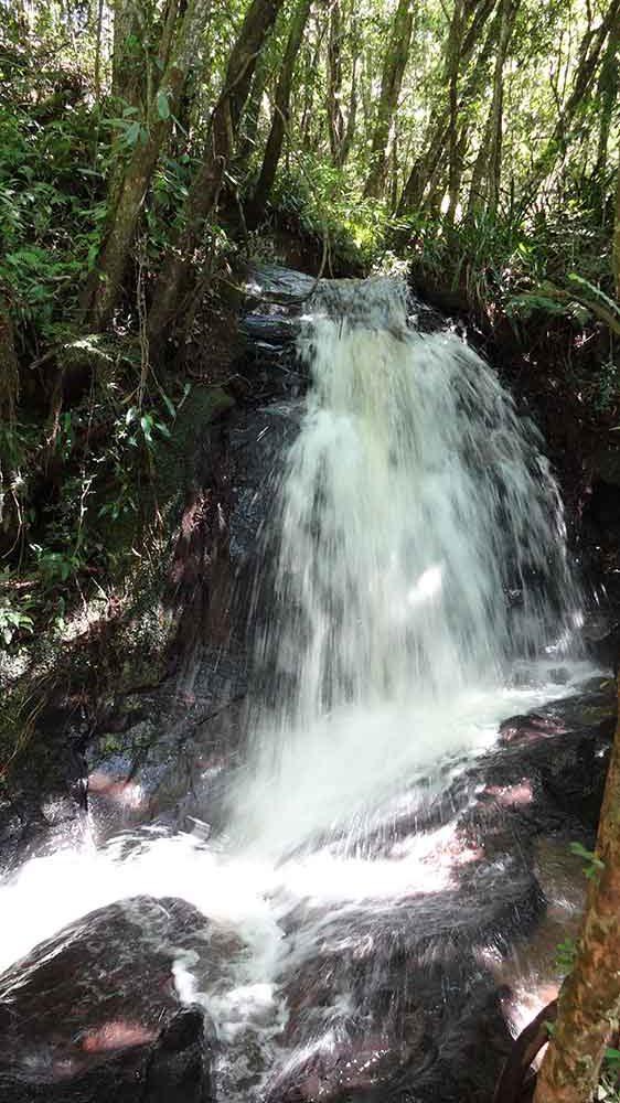Cachoeira da Trilha das Bromélias - Gonçalves - Cidades de Minas Gerais