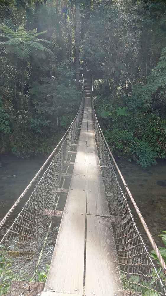Ponte dos Cachorros - Visconde de Maua