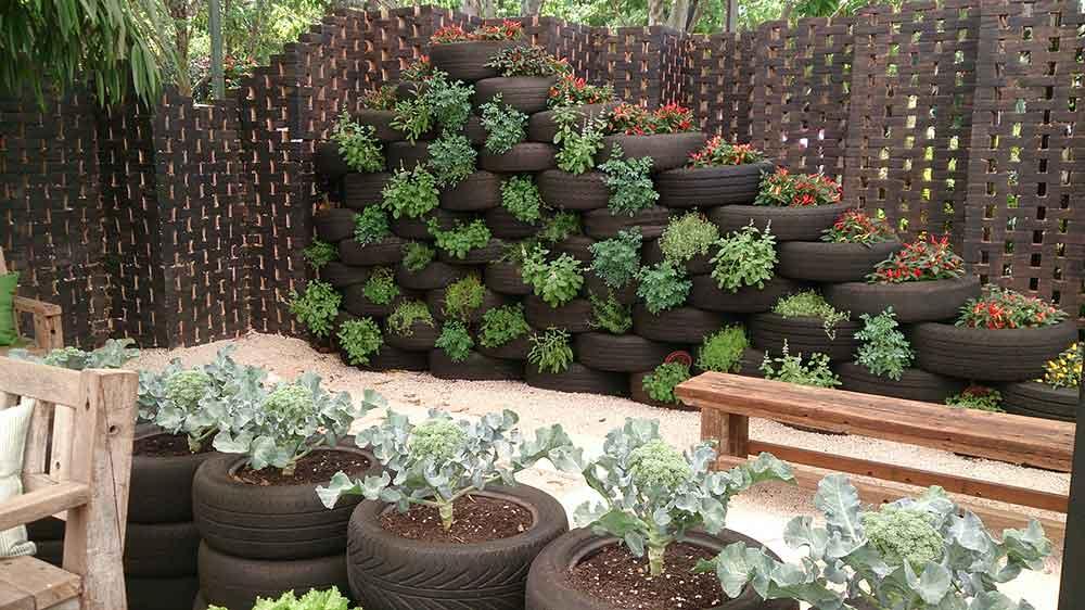 Modelo de Cultivo Sustentável - Expoflora Holambra