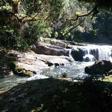 Parque Estadual da Serra do Mar, um lindo parque de Mata Atlântica em São Paulo