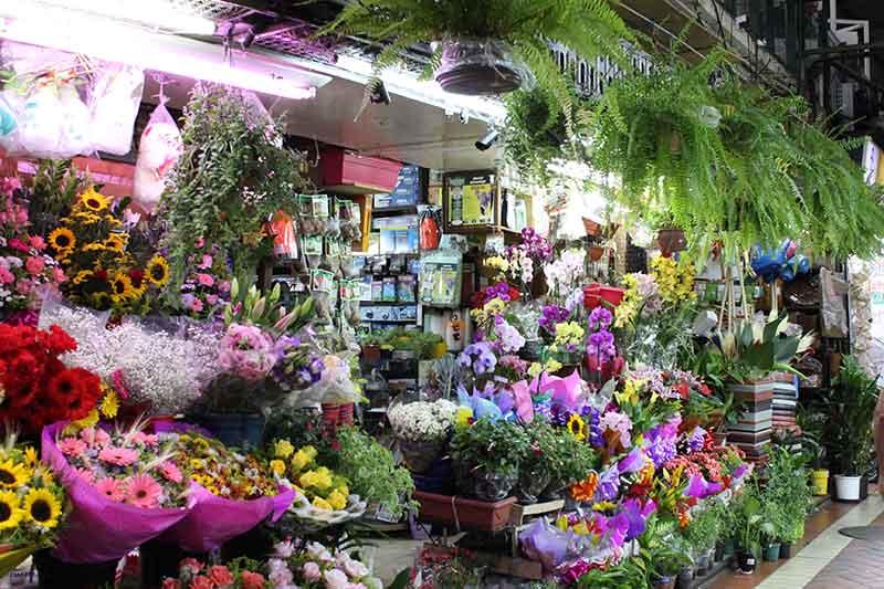 Floricultura - Mercado Central Pontos Turísticos de Belo Horizonte