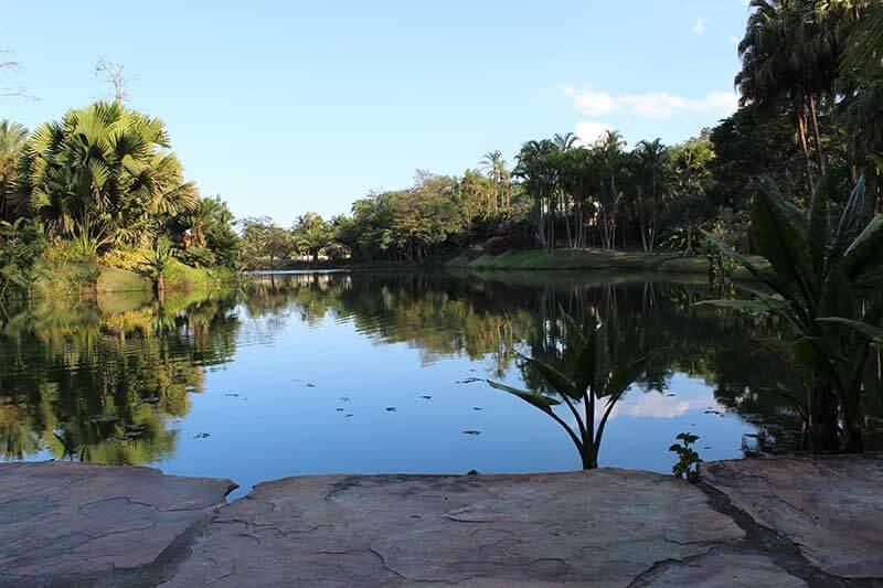 Lago Instituto Inhotim - Museu de Arte Contemporânea