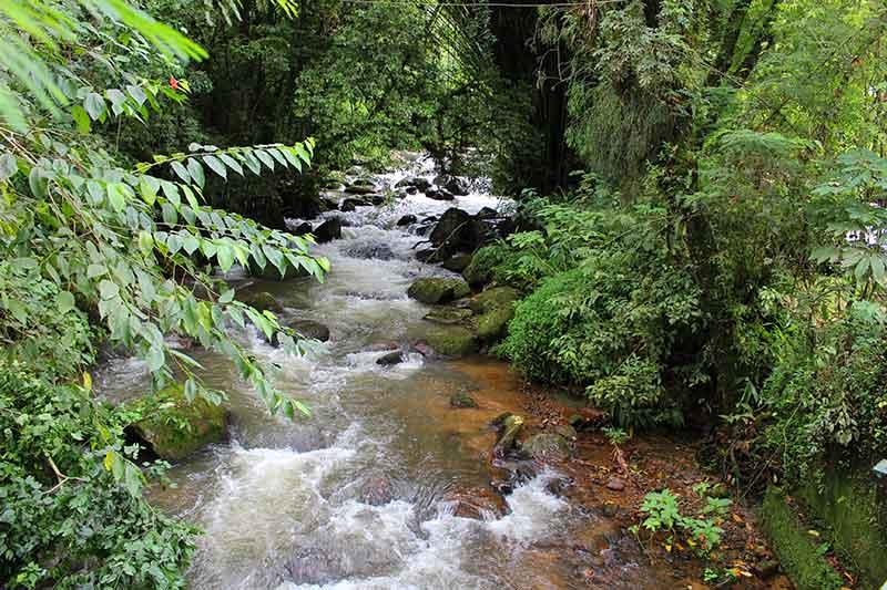 Corredeira Cachoeira Pedro Davi - São Francisco Xavier SP