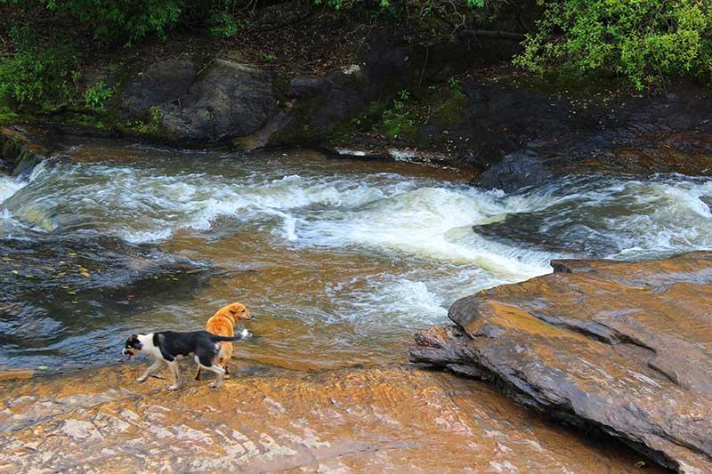 Nossos Guias e Protetores Cachoeira dos Luís - Cidade das Cachoeiras
