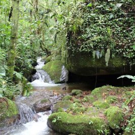 Pedra Suspensa Complexo - Pouso do Rochedo - São Francisco Xavier SP