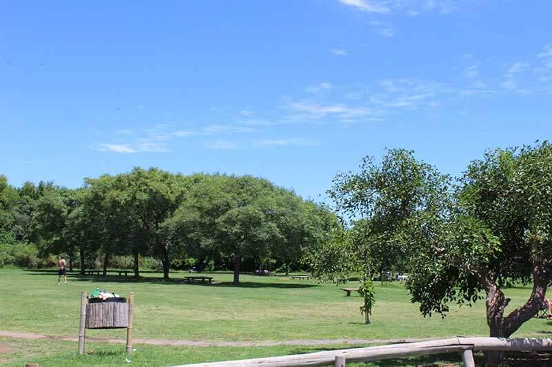 Bosque Alegre - San Isidro