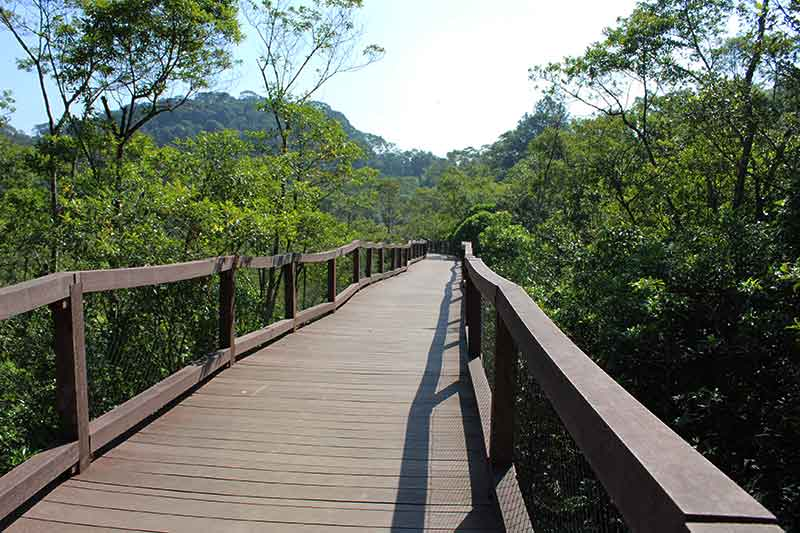 Parque Ecológico Imigrantes Cultura Japonesa no Brasil