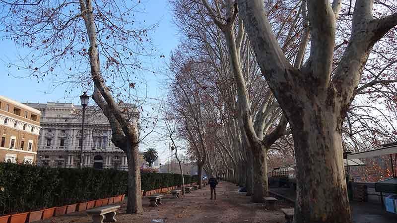 Rua em Roma - Roteiro Roma