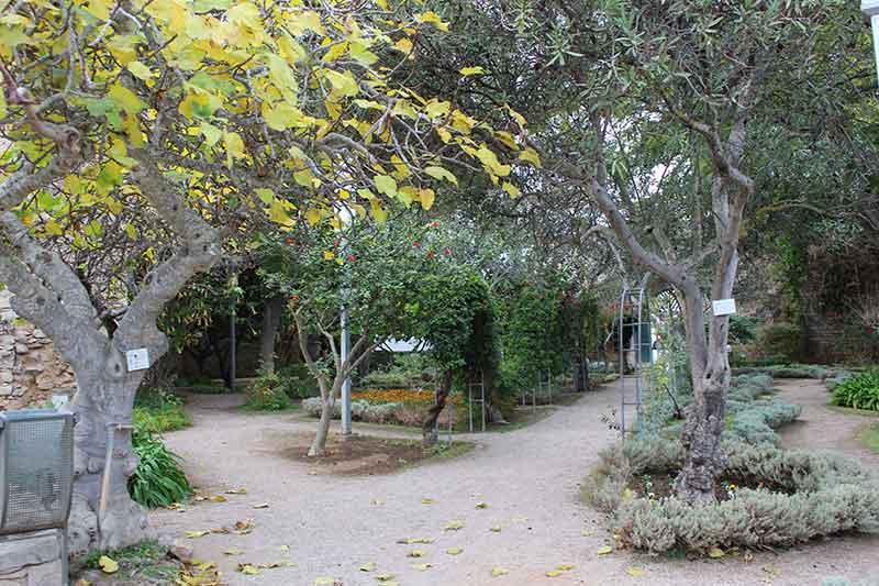 Jardim do Castelo de Tavira Portugal