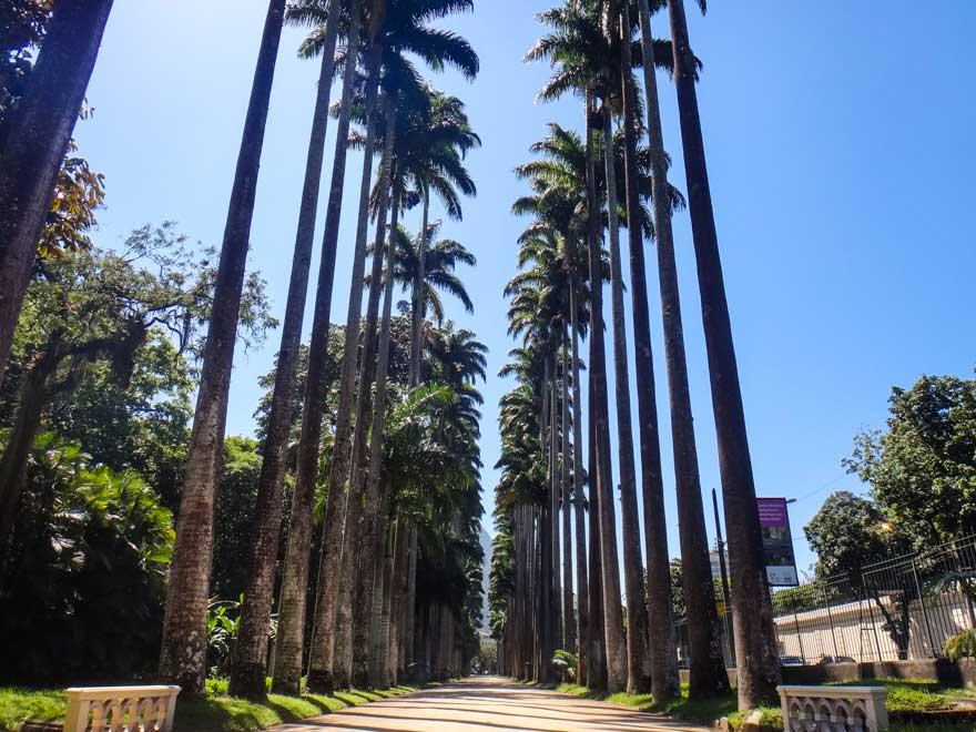 Jardim Botânico - Pontos Turísticos no Rio de Janeiro