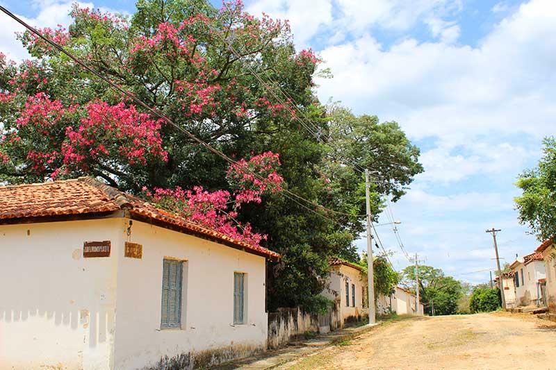 Rua e Casas da Fazenda Ipanema